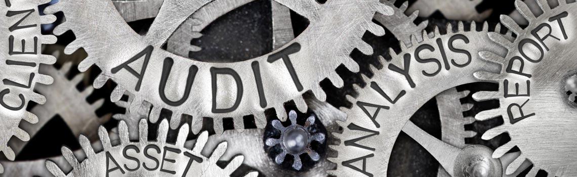 Preparazione e gestione di un audit