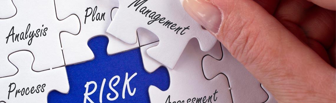 Aspetti del Quality Risk Management
